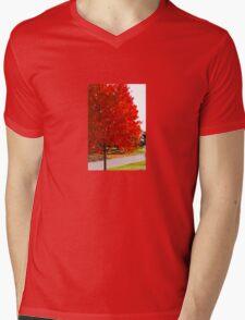 Reds of Autumn Mens V-Neck T-Shirt