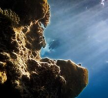 Diver through Coral by errno