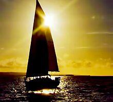 Sunset Sail by David Alexander Elder