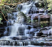 Top Falls - Somersby, Brisbane Waters National Park NSW Australia by Bev Woodman