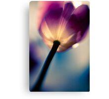 Surreal Tulip Canvas Print