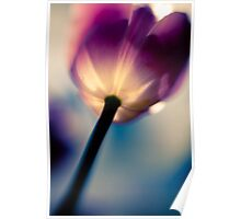 Surreal Tulip Poster