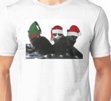 3 Little Kittens Lost Their Mittens Unisex T-Shirt