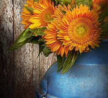 Flower - Sunflower - Country Sunshine by Mike  Savad