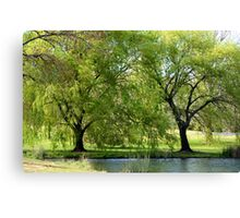 Willows on the Lake Canvas Print