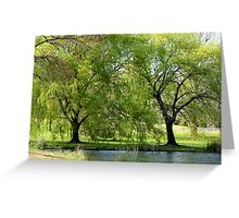 Willows on the Lake Greeting Card