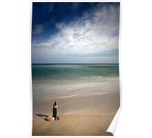 Longnook Beach Shell Poster