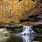 McCormicks Creek Falls, Indiana by Kenneth Keifer