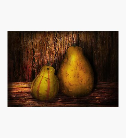 Autumn - Gourd - A pair of squash  Photographic Print