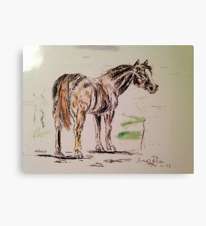 Pen and ink  horse Canvas Print