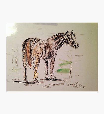 Pen and ink  horse Photographic Print