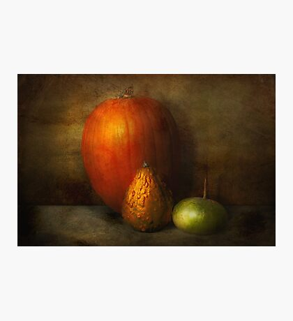 Autumn - Gourd - Melon family  Photographic Print