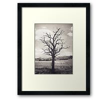 Old Tree Distressed Landscape Framed Print