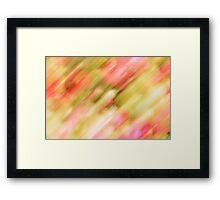 The Rose Bush Framed Print