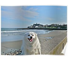 Last Great Beach Day - Sylvie At Narragansett Beach Poster