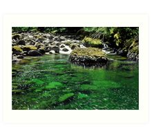 McCord Creek Art Print