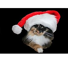Lily Claus Photographic Print