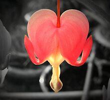 Blooming Love by BadIdeaArt
