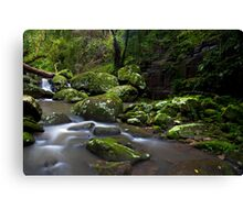 River of Dreams Canvas Print