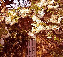 Vintage Gate by Ulla Vaereth