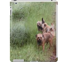 Three Little ShihTzu iPad Case/Skin