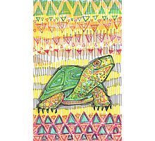 Turtle drawing - 2015 Photographic Print