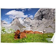 Vanoise National Park Poster