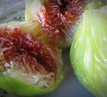 Figs by rasim1