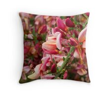 Red Broom in Bloom Throw Pillow