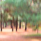 Trees - 23 - Impressions by Yannik Hay