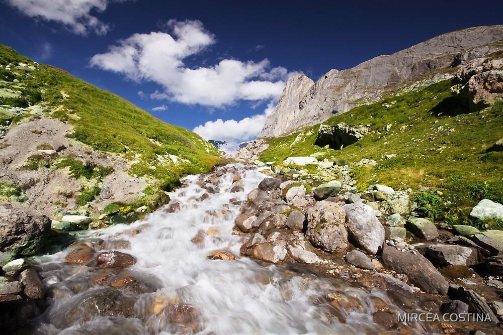 Alpine by MIRCEA COSTINA