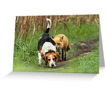 Probably the world\'s worst hunting dog Greeting Card