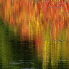 Ablaze with Color by lorilee