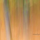 Trees- 14 - Impressions by Yannik Hay