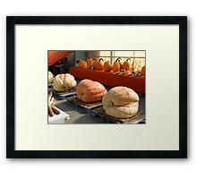 Huge Pumpkins! Framed Print