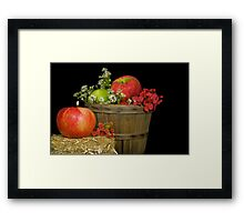 Autumn Apples Framed Print