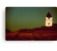Stay In Touch Canvas Print
