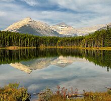 Herbert Lake, Banff NP by Teresa Zieba