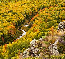 Autumn Precipice by James Marvin Phelps