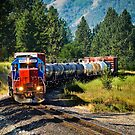 Local Train by haybales