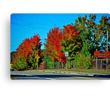 Small Town Fall Canvas Print