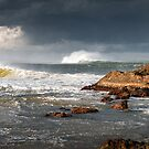 Swell by Robert Dettman