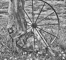 Wheel of Misfortune by Jim  Egner