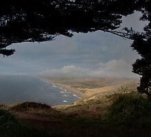 Point Rays by Devon Murphy