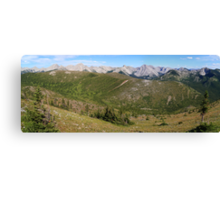 Panoramic wilderness Canvas Print