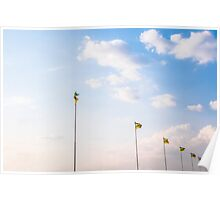 Flags of Brazil Poster
