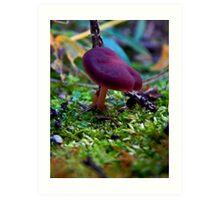 Mushroom Kingdom (8144) Art Print