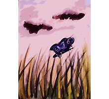cloudy day for a butterfly , watercolor Photographic Print