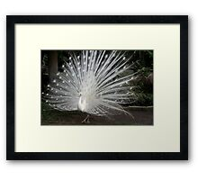 Stepping Out in Style Framed Print