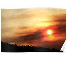 Forestry Tasmania Sunset Poster